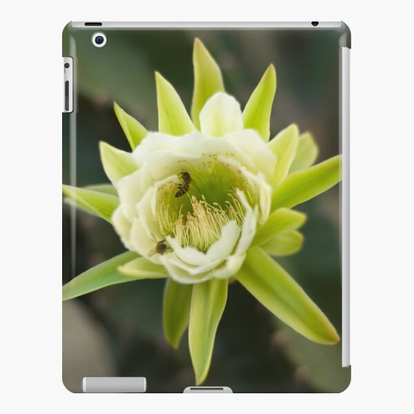Princess of the Night - Bloom with Playful Bees iPad Snap Case