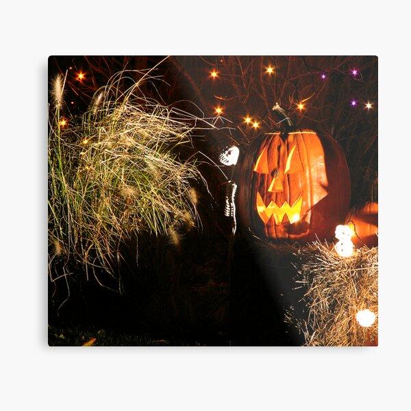 Pumpkin and grass Metal Print