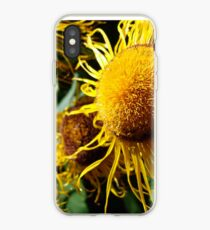 Sunflowers in Bloom - Shee Nature Photography iPhone Case