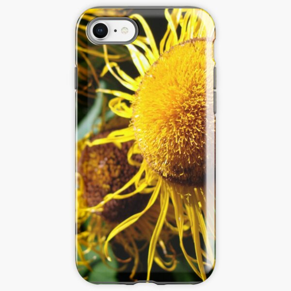 Sunflowers in Bloom - Shee Nature Photography iPhone Tough Case