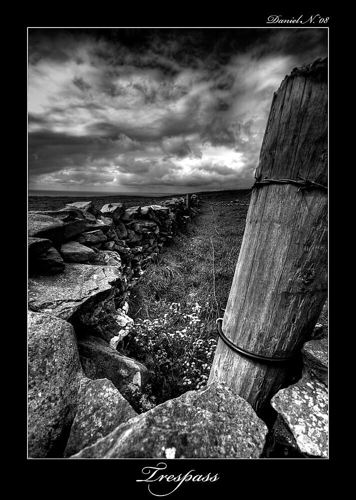 Trespass by Daniel Nahabedian
