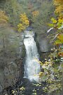 Bridal Veil Falls by Paul Gitto