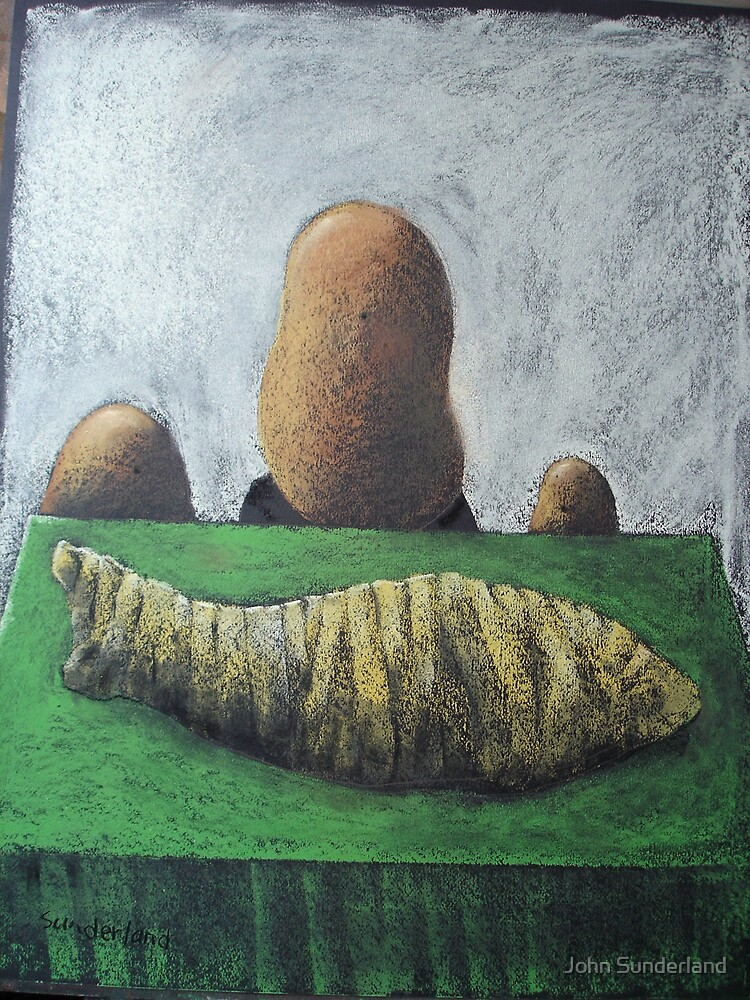 Potato Wrapped Salmon by John Sunderland