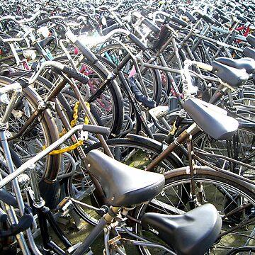 Bikes by viba