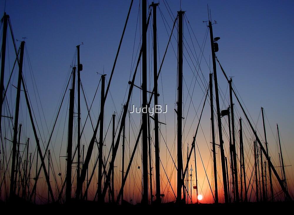 Sunset at the marina by JudyBJ