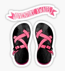 Pink Chacos Sticker