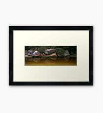 Tidal River Rocks 001 Framed Print