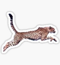 Cheetah Running Sticker