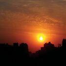 Egyptian Sun by Shannon McLean