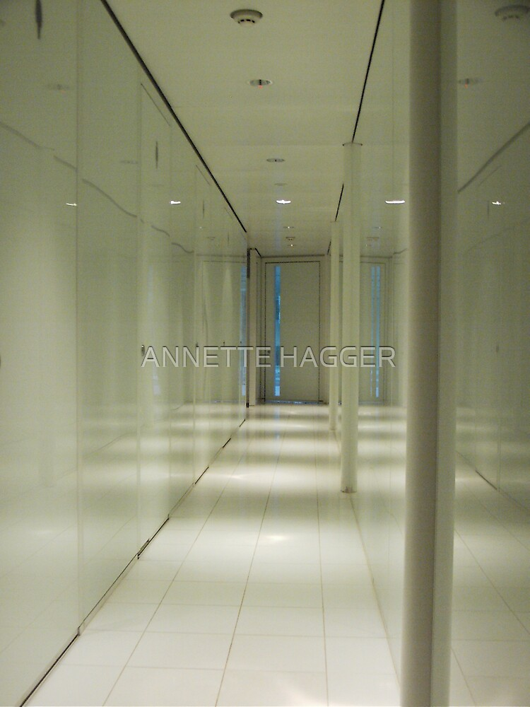 The Corridor by ANNETTE HAGGER
