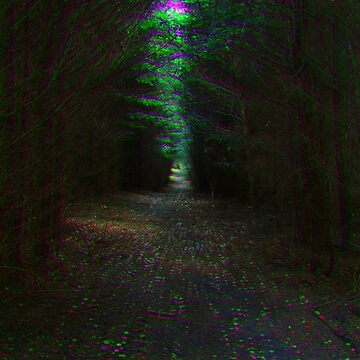 Forest Path by Spaghettiwester