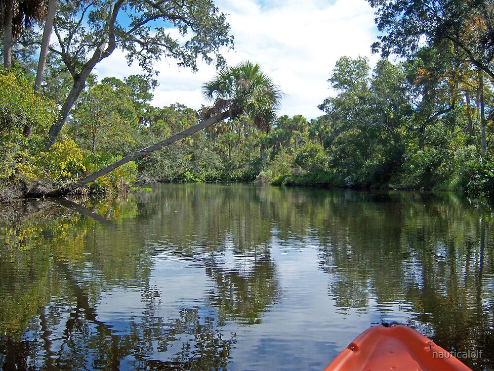 Old Florida, Kayaking the Anclote River by nauticalelf