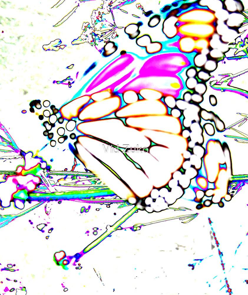 'butterfly' by Vid Zuko