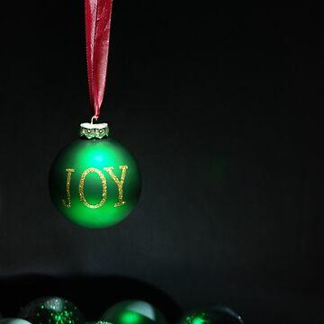 Christmas Joy by aaronnaps
