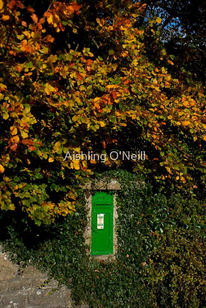Autumn Legan Postbox, Ireland by Aishling O'Neill