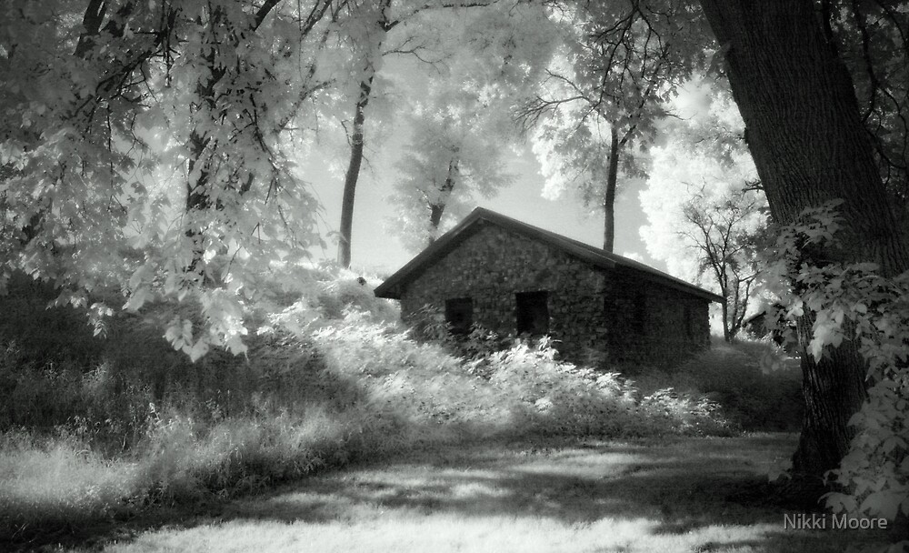 Moss and an Old Manse by Nikki Moore