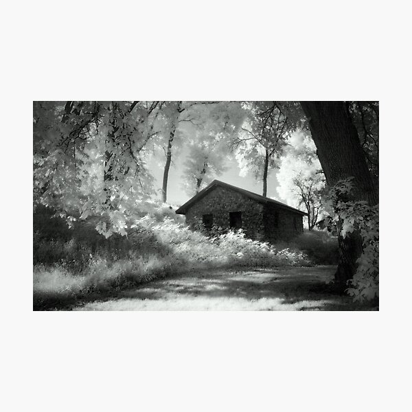 Moss and an Old Manse Photographic Print