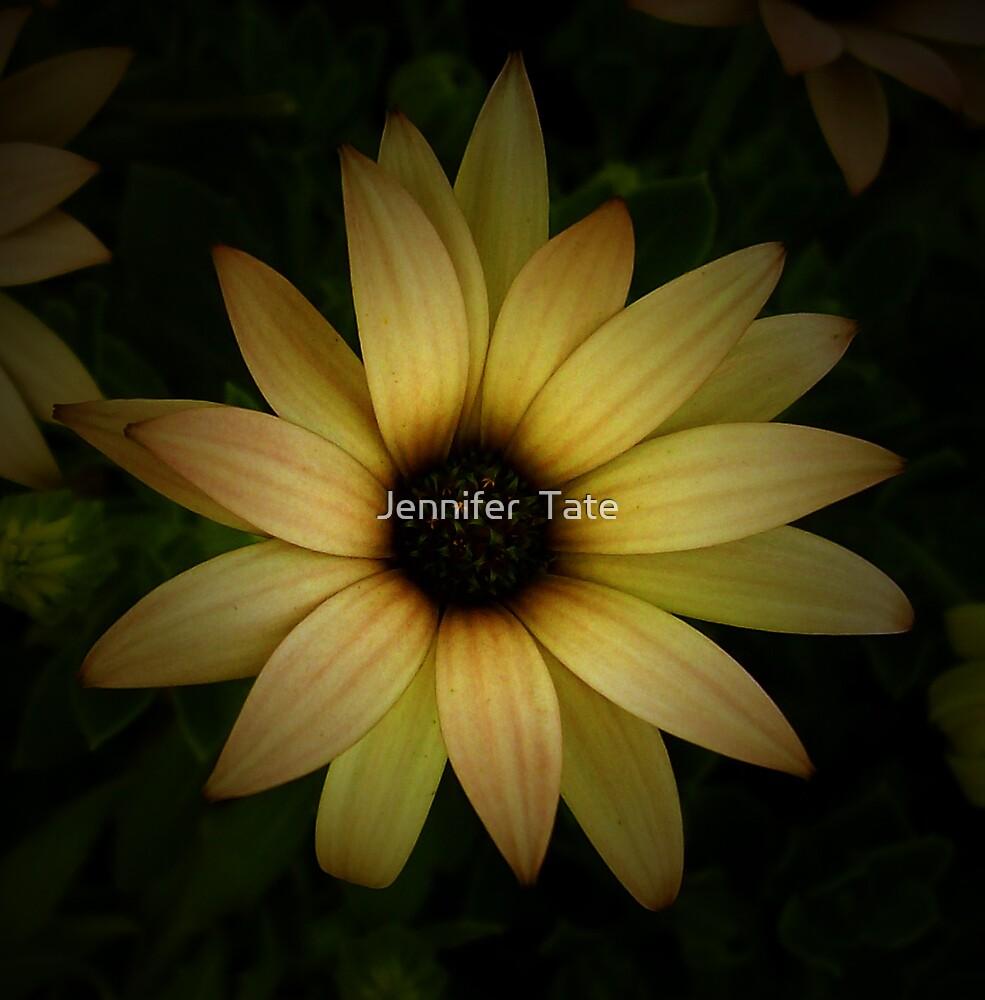 Yellow Wonder by Jennifer  Tate