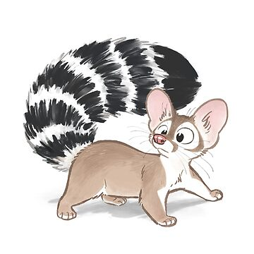 Ringtail by HenriekeG