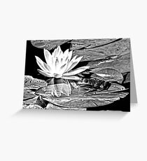 A frog's life in black and white Greeting Card