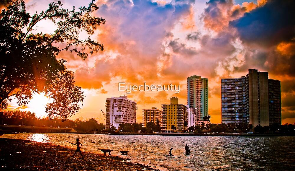 Playful Sunset... by Eyecbeauty