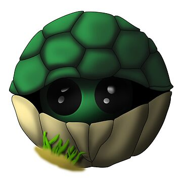 turtle coo by theFrostisreal