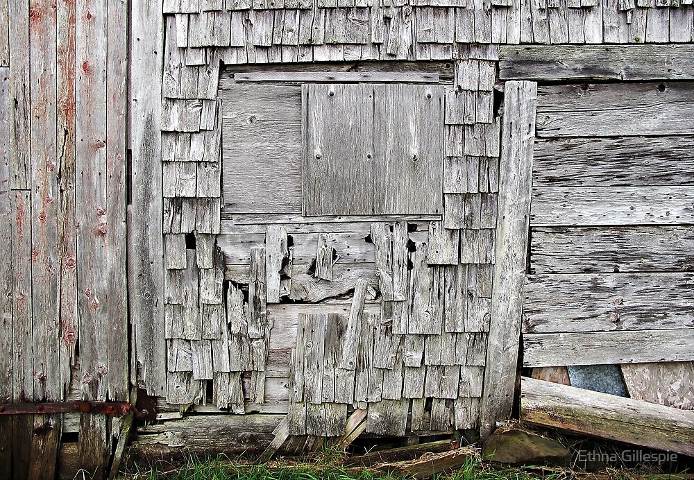 Weathered Barn  by Ethna Gillespie