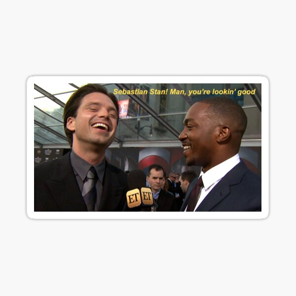 Sebastian Stan and Anthony Mackie Sticker