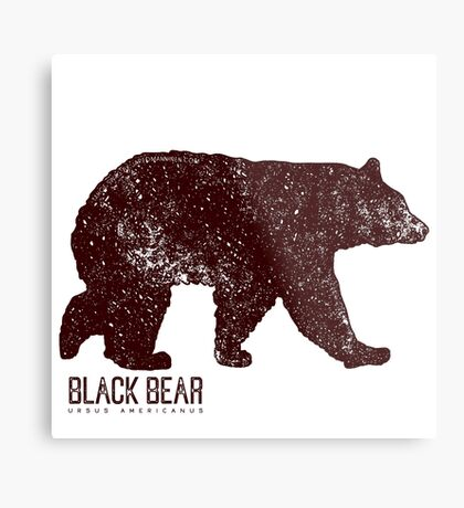 Black Bear Walking Metal Print