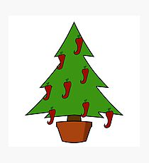 Spicy Christmas Tree - Chilli Peppers Photographic Print