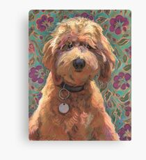 Lucky Labradoodle Canvas Print