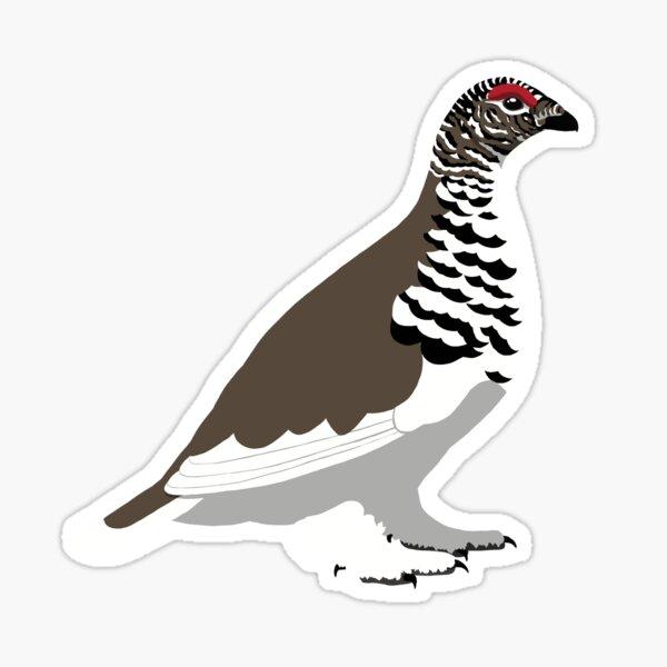 White-tailed Ptarmigan Sticker