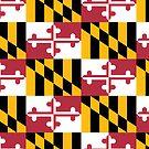 Maryland Flag by rjburke24