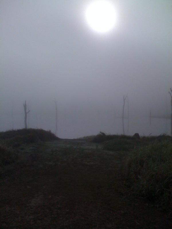 Fog_4 by zacmonty