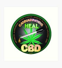 CBD Cannabinoids in Hemp oil Cures  learn truth about use of hemp oil to cure illness and pains. Art Print