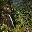 Ellenborough Falls by Mark Snelson