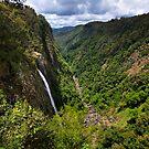 Ellenborough Falls Gorge by Mark Snelson