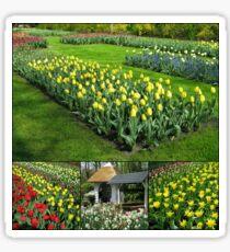 Keukenhof Tulips Collage Sticker
