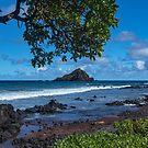 Maui, Hana Coastline by photosbyflood