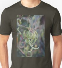 Seaside Seed Pods Unisex T-Shirt