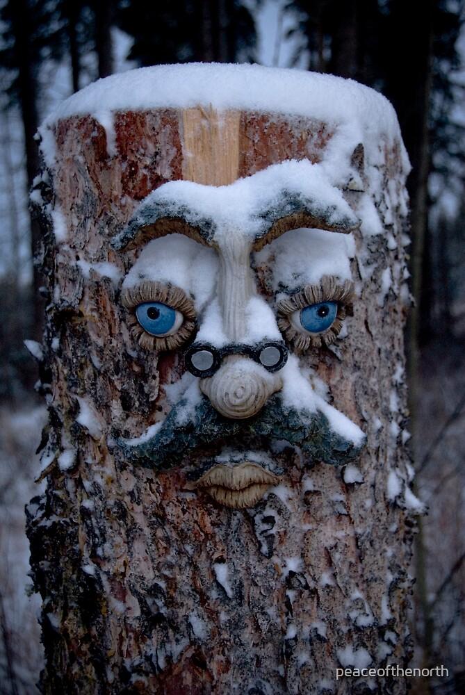 Mr.Woodenhead by peaceofthenorth