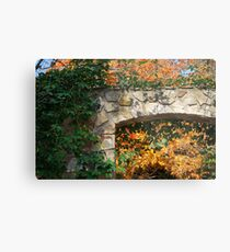 Framing Fall Metal Print