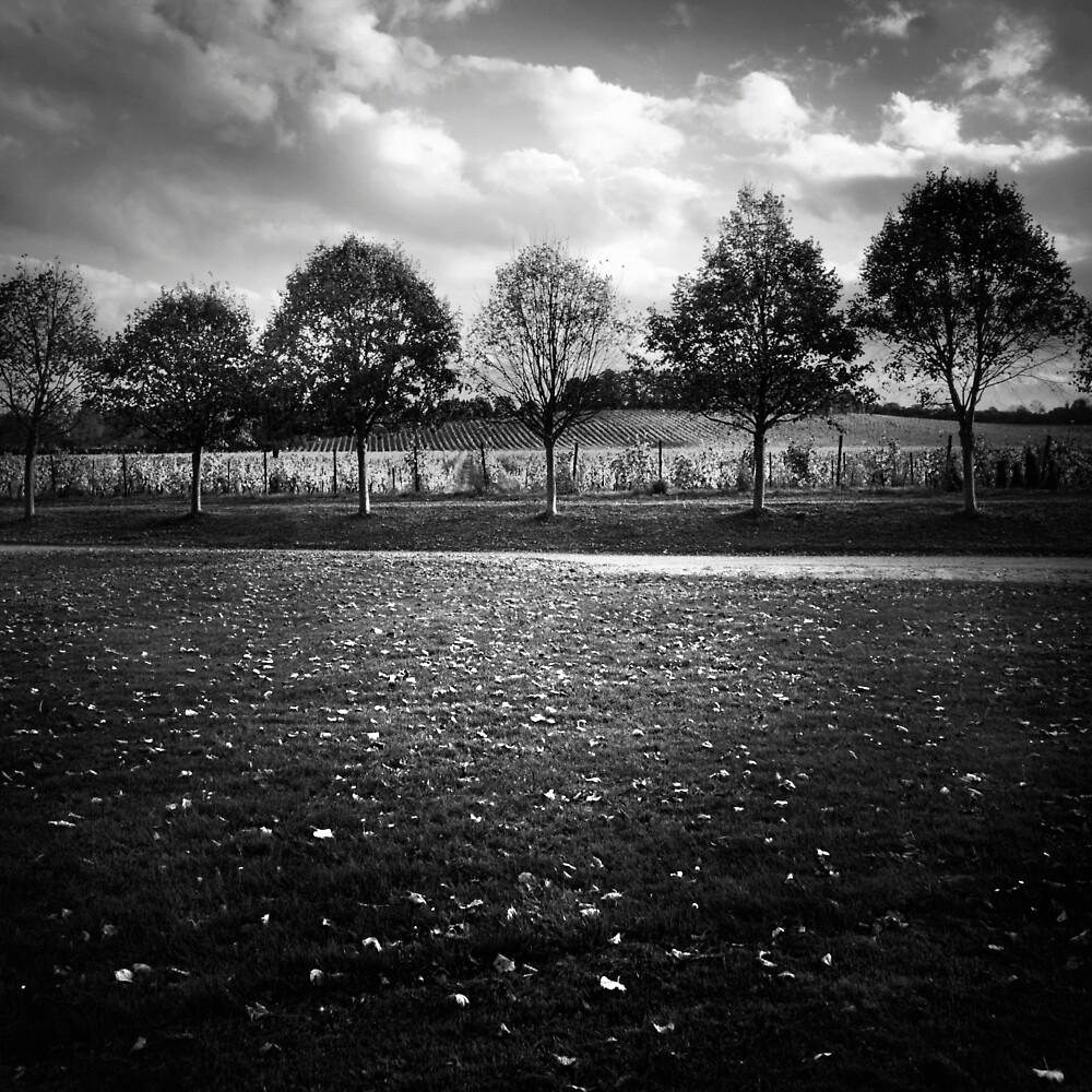 Autumn by jez92