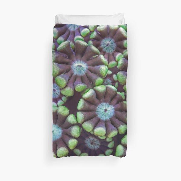 Alveopora coral pattern Duvet Cover