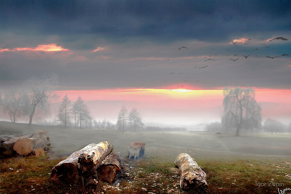 Country Sunset by Igor Zenin