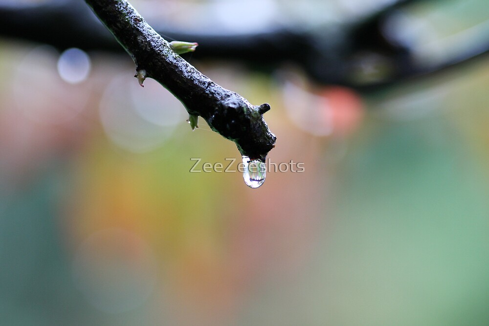 Trying to catch the last drop by ZeeZeeshots
