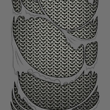 Chainmail armor brand new by pattypattern