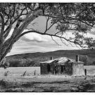 Old Homestead by Matt Fricker