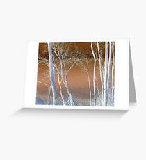 Lake Michigan Through the Trees Greeting Card
