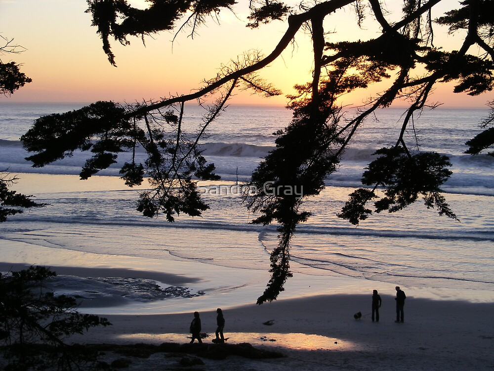 Carmel Sunset Walk by Sandra Gray